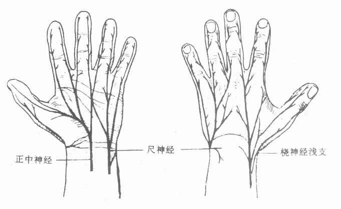 欢迎光临骨科咨询网 Dr.su